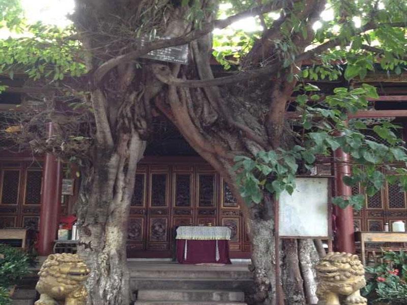 聖教寺简史